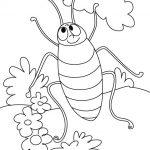 dibujo cucaracha2
