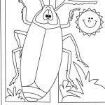 dibujo cucaracha6